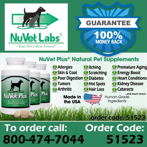 Nuvet best dog vitamins